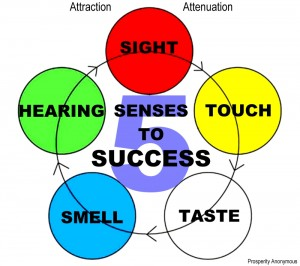 5-senses-to-success-attraction-attenuation-prosperity